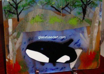 Puget Sound Orca